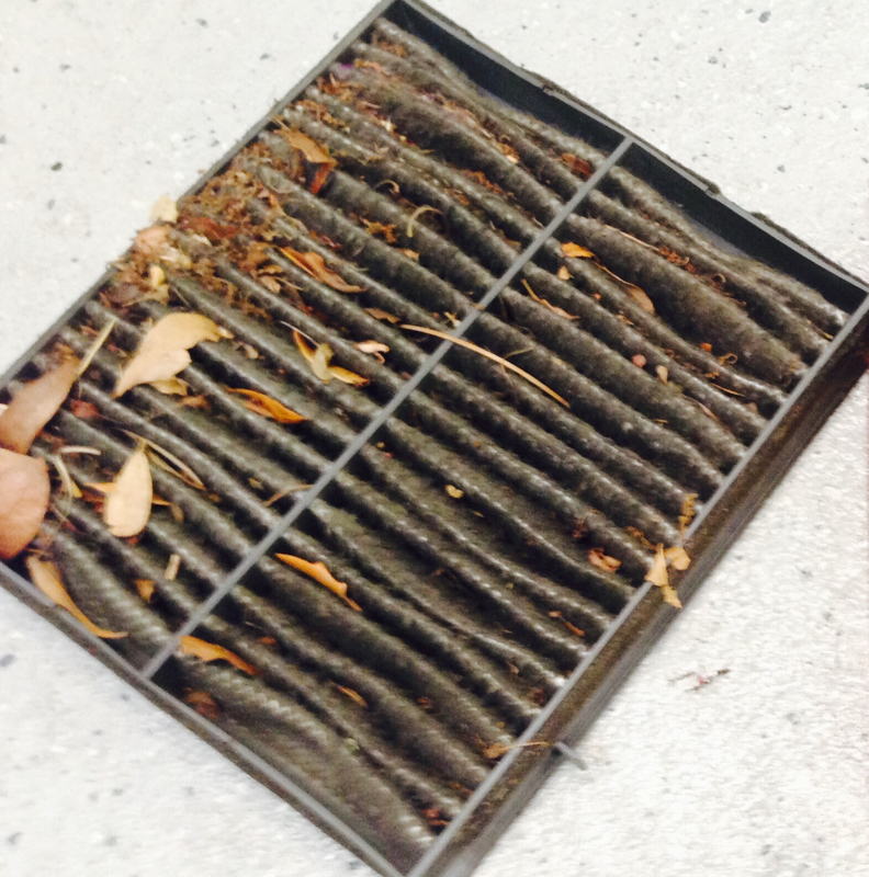 What's a Cabin Filter and when should it be replaced